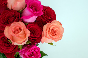 Bouquet of red and pink roses at left on white