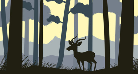 Background scene with silhouette gazelle in forest