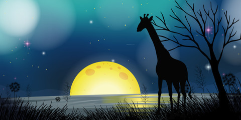 Background scene with silhouette giraffe at night