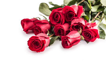 Red roses. Bouquet of red roses isolated on white