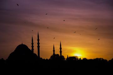 istanbul süleymaniye camii