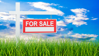 For Sale sign in green grass, 3d rendering