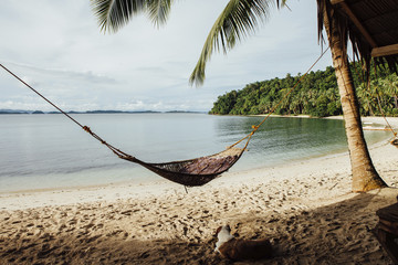 Scenic view of sea with dog resting by hammock at beach