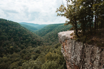 Hawksbill Crag Whitaker Point Hiking Trail in Arkansas near Fayetteville