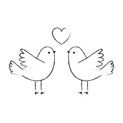 couple doves flying with heart vector illustration design