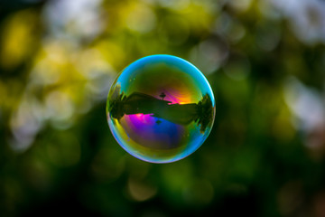 Floating Soap Bubble