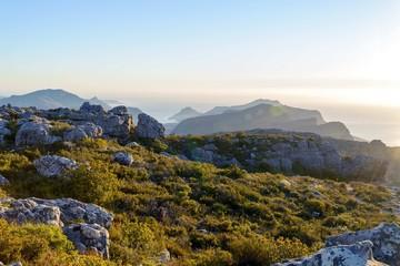 Table Mountain park