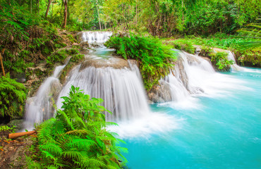 Foto op Aluminium Watervallen waterfall of island of Siquijor. Philippines