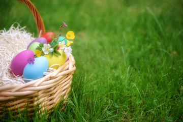 Basket with colorful easter eggs on green springtime grass