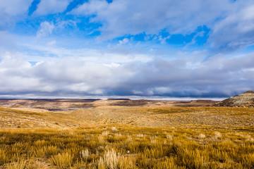 Midwest Plains