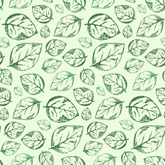 Beautiful hand drawn vintage seamless pattern with outline scratched green leaves on light green background. Romantic retro roses leaf texture for textile, wrapping paper, surface, wallpaper