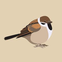 sparrow  fat vector illustration flat style  profile