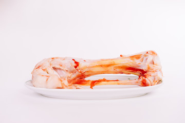 a gnawed bone lies in a plate on a white background