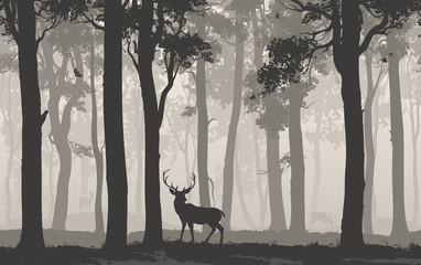Wall Mural - Horizontal seamless background with deciduous forest, birds and deer. Vector illustration