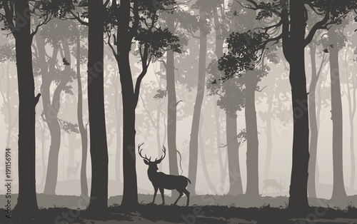 Wall mural Horizontal seamless background with deciduous forest, birds and deer. Vector illustration