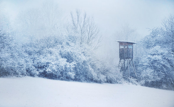 Hunting Hide. Winter in Central Europe. Snowfall.