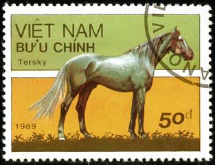Ukraine - circa 2018: A postage stamp printed in Vietnam show horse of the breed Tersky or Equus ferus caballus. Series: Horses. Circa 1989.