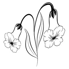 Beautiful silhouette of a flower on a white background. Contour drawing. Element for design and decoration. Vector illustration.