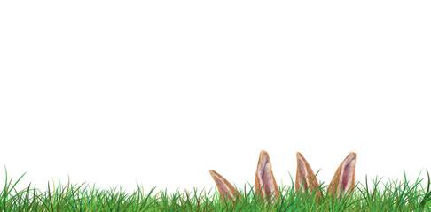 Frühling Osterkarte Banner