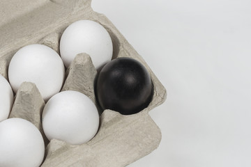 Black egg surrounded by white chicken eggs in a cardboard box