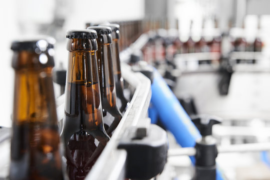 Brown beer bottles at a assembly line