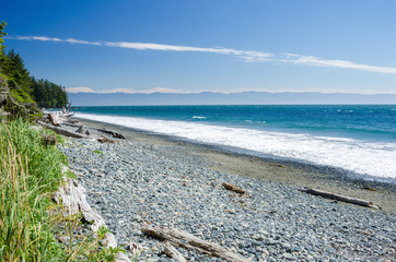Deserted Pebble Beach with Driftwood under Blue Sky on a Summer Day. Vancouver Island, Canada. Wall mural