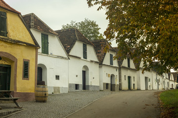 Typical winery cellars in Lower Austria