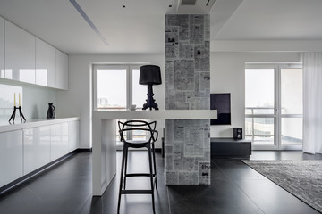Modern black and white interior