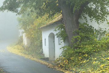 Winery cellars on a foggy morning