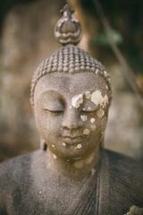 Stone Buddha in the nature.