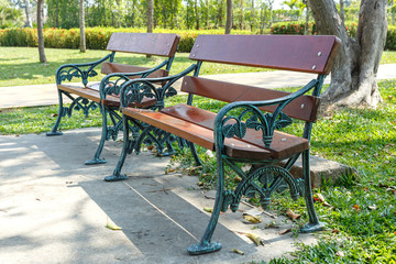 bench in beautiful public park