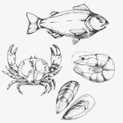 Sketch set of seafood. Hand drawn vector illustration