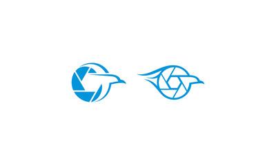 birds, beach birds, hawks, photos, shutter, diaphragm, emblem symbol icon vector logo