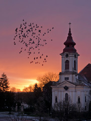 Flock of Pigeons Flaying  around The Church in front of Sunrise.