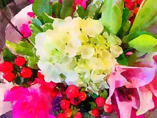 Beautiful Assortment of Flowers