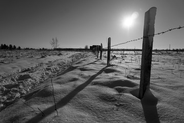 barbed wire fence in winter - black and white photo