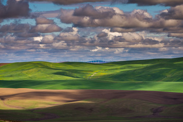 Amazing clouds over plowed fields, an incredible drawing of the earth. Kamiak Butte State Park, Whitman County, Washington, USA