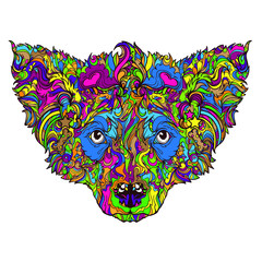 Vector ornament face of dog. Line art style. Color version. Coloring book. Isolated on white background.