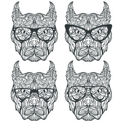 Set of pitbull faces with different eyeglasses and sunglasses, line art style, coloring book page, vector illustration isolated on white background