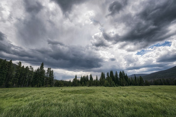 Scenic view of grassy field against stormy cloud at Rocky Mountain National Park