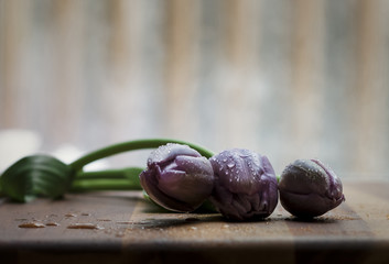 Close-up of wet purple tulips on wooden table