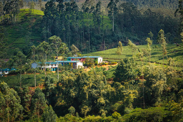 Beautiful view on houses in the Sri Lanka nature, close to Adams Peak
