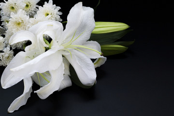 Stores photo Fleur de lis Bouquet of flowers on a dark background