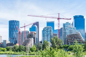 Green Calgary growth Wall mural