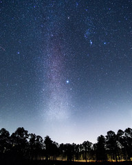 Sternenhimmel im De Soto National Park, Mississippi, USA