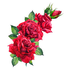 Red roses - floral composition isolated on white. Watercolor