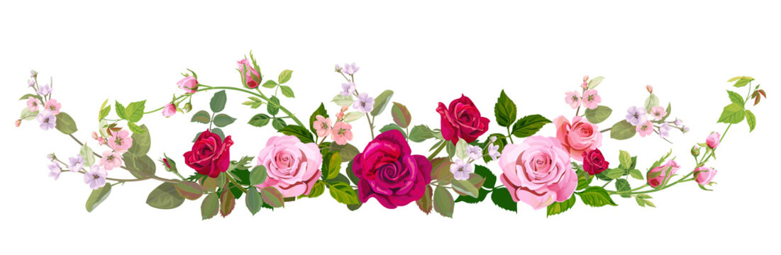 Panoramic view: bouquet of roses, spring blossom. Horizontal border: red, mauve, pink flowers, buds, green leaves on white background. Digital draw illustration in watercolor style, vintage, vector