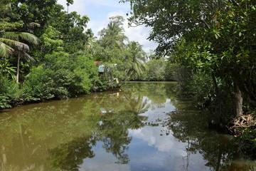 Fluss und Landschaft in Sri Lanka