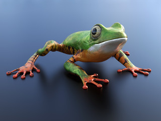 3D rendering of a realistic tree frog.