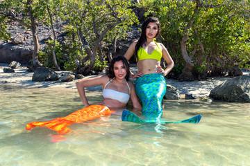 Two mermaid in love on the beach